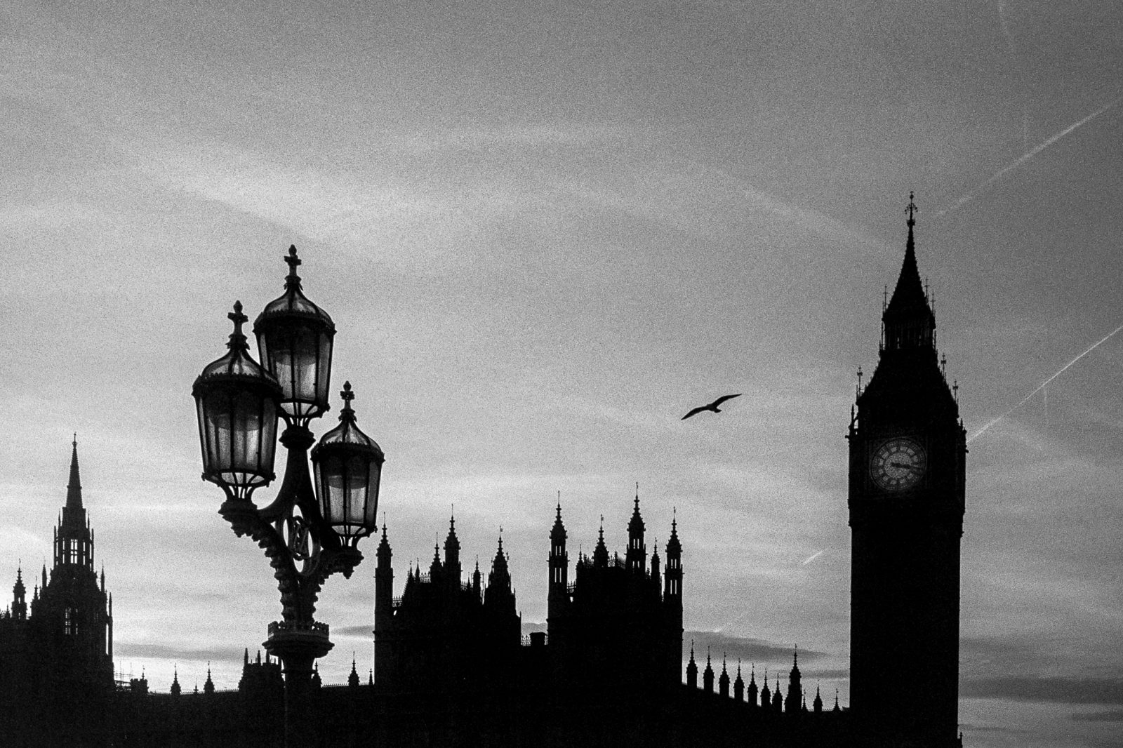 Soaring over Westminster
