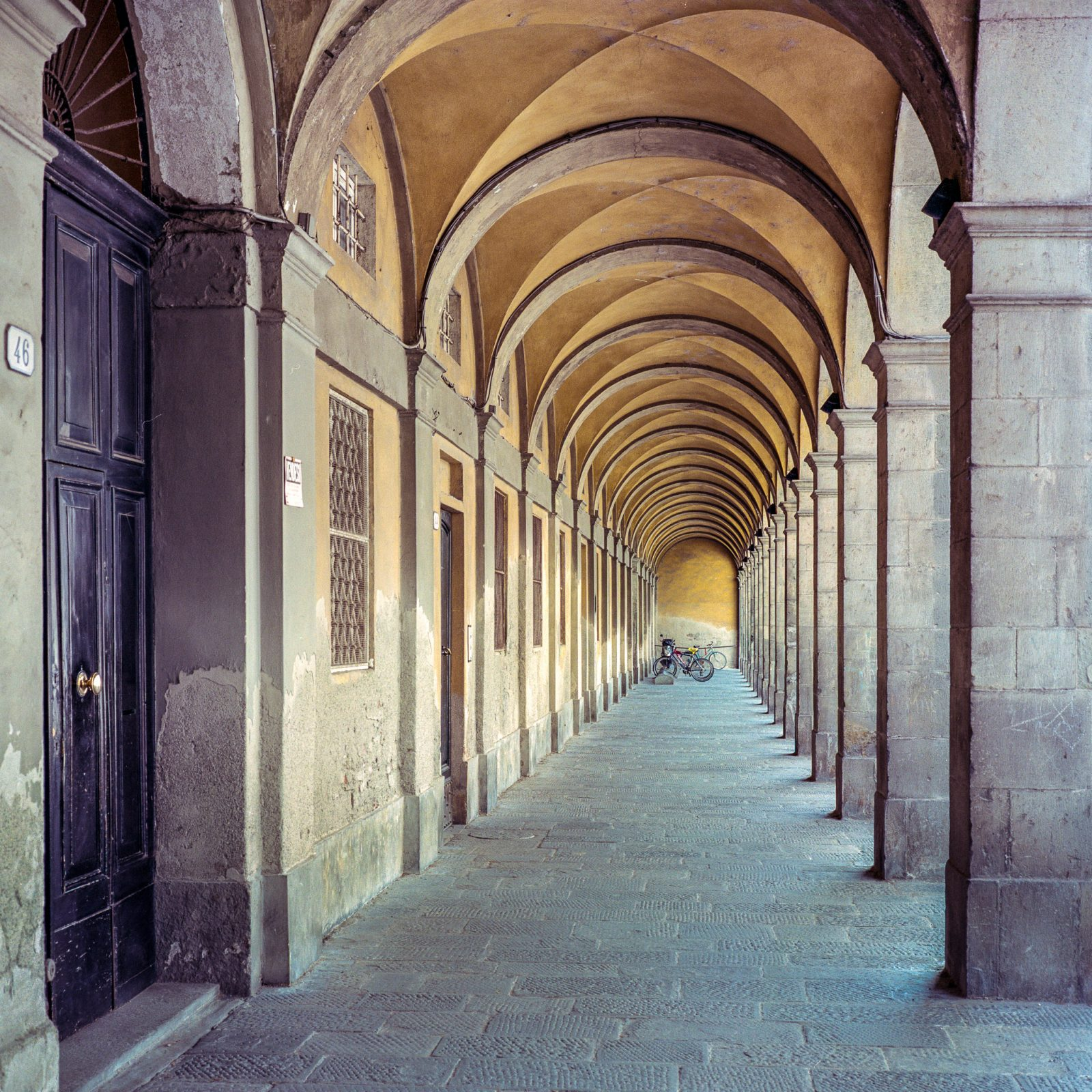 Lucca Colonnade